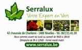 Serralux